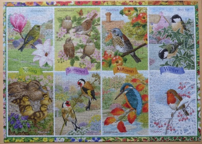 1000 Seasonal Garden Birds1.jpg